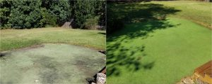 green sport pitch before and after cleaning