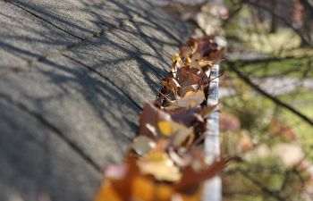 Why You Should Keep Your Gutters Clean Alpharetta, GA